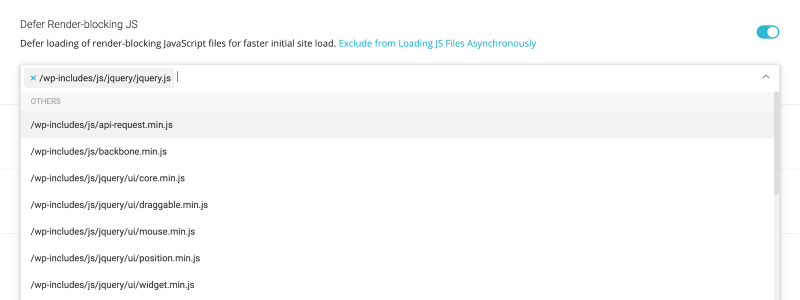 SG Optimizer Exclude From Loading JS Files Asynchronously List