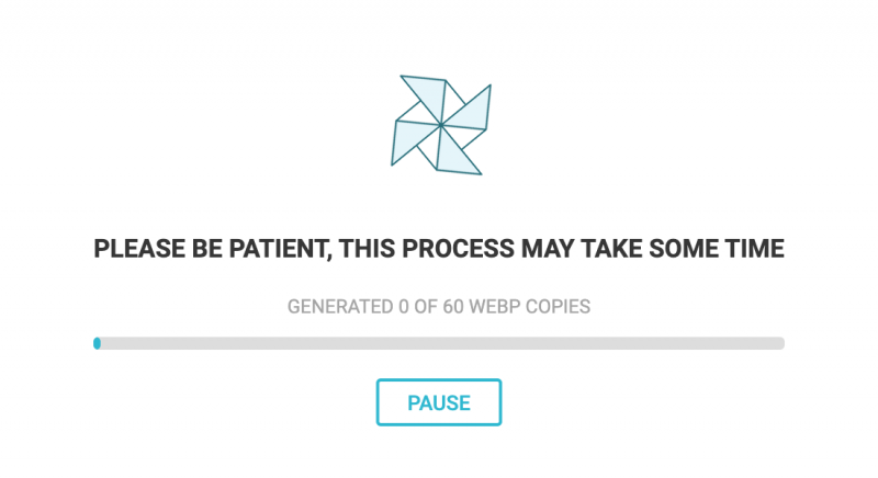SG Optimizer Generate WebP Images Currently Processing Progress Bar